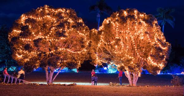 bermuda christmas lights in december