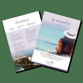12 Months in Bermuda LP Image
