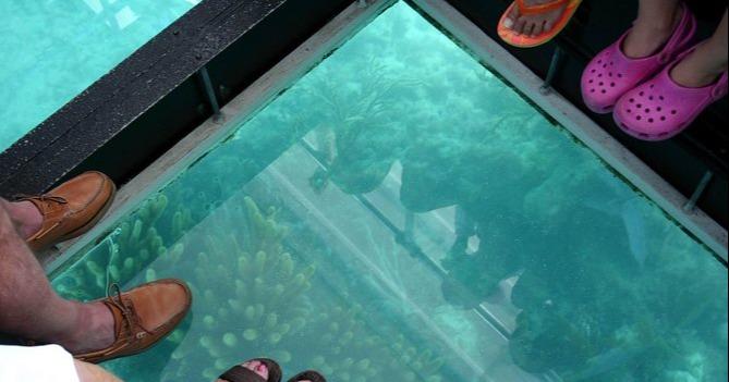 glass bottom boat tour bermuda