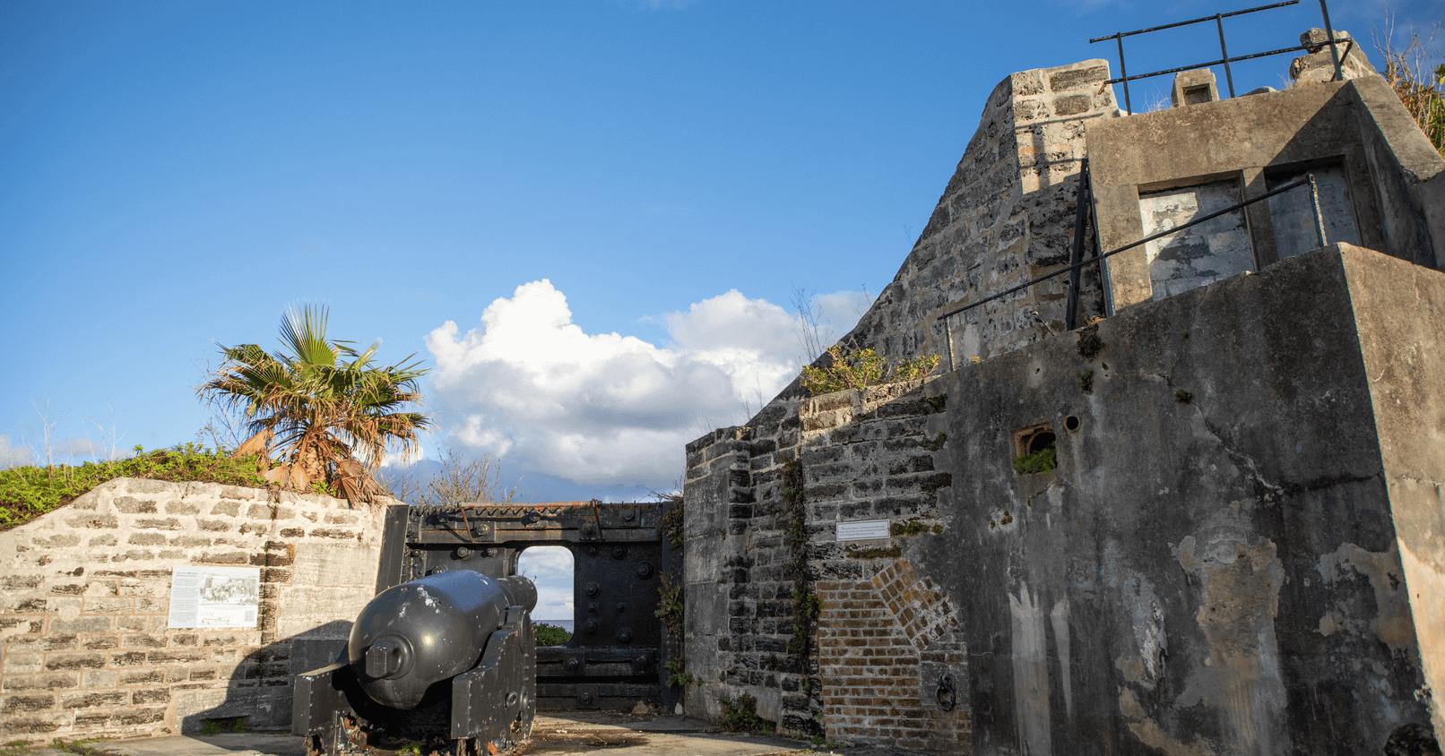 Alexandra Battery-6 (1)-1