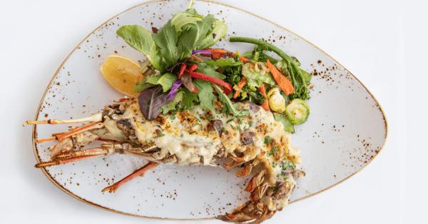 spiny lobster season in bermuda september