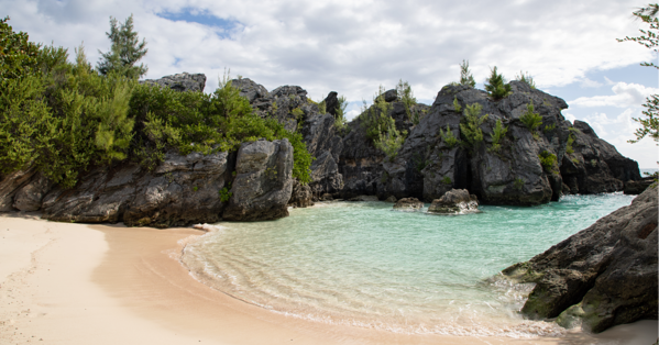 jobsons cove in july in bermuda