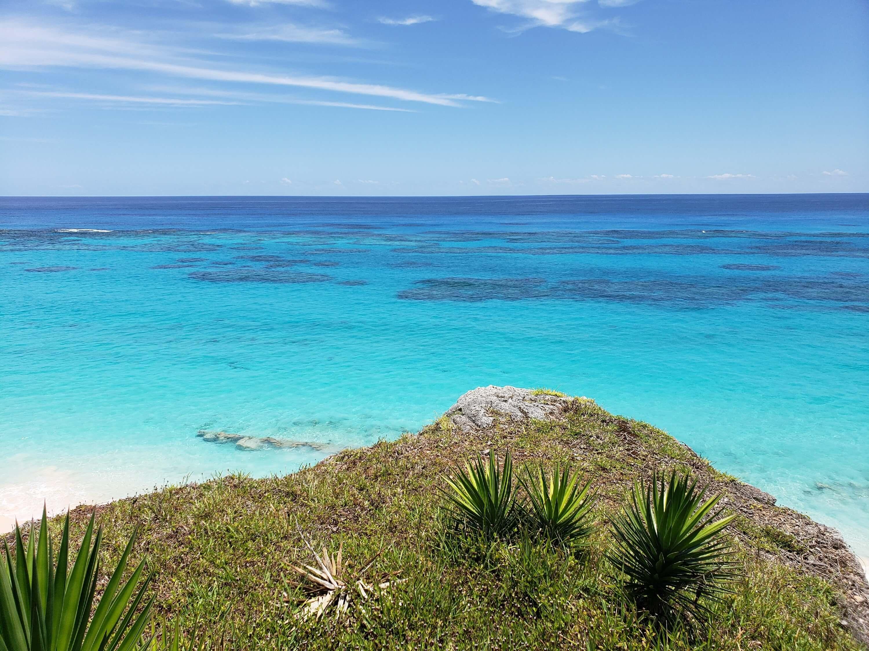 view from bermudiana beacj