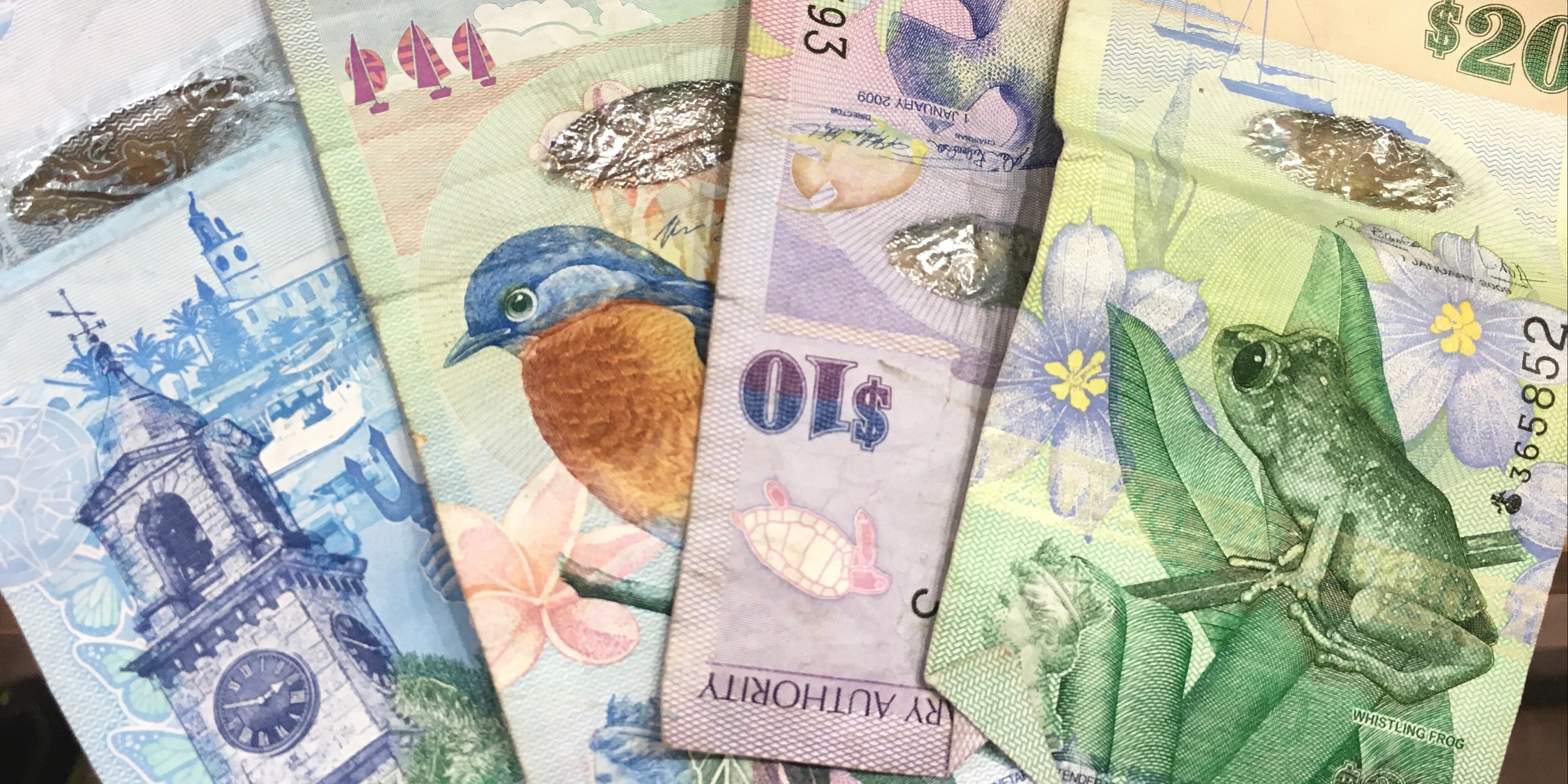 Bermudian Currency Bermudian Dollar