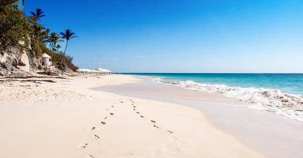 elbow beach bermuda  famous pink sands