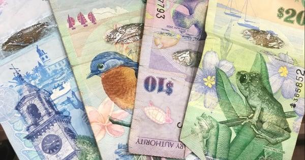 bermuda currency